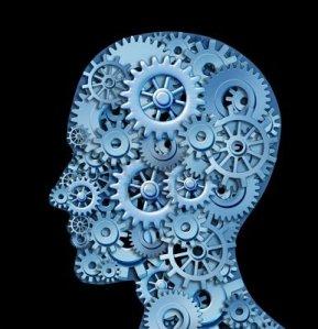 brain-cogs2